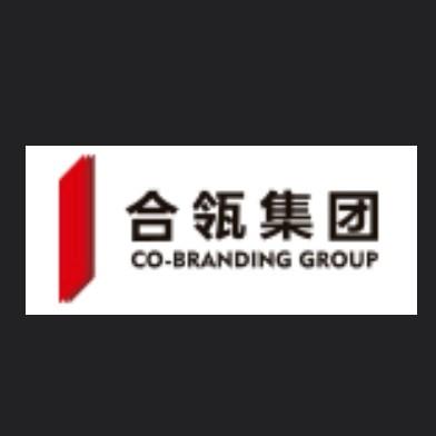 宁夏合瓴文化科技集团有限公司