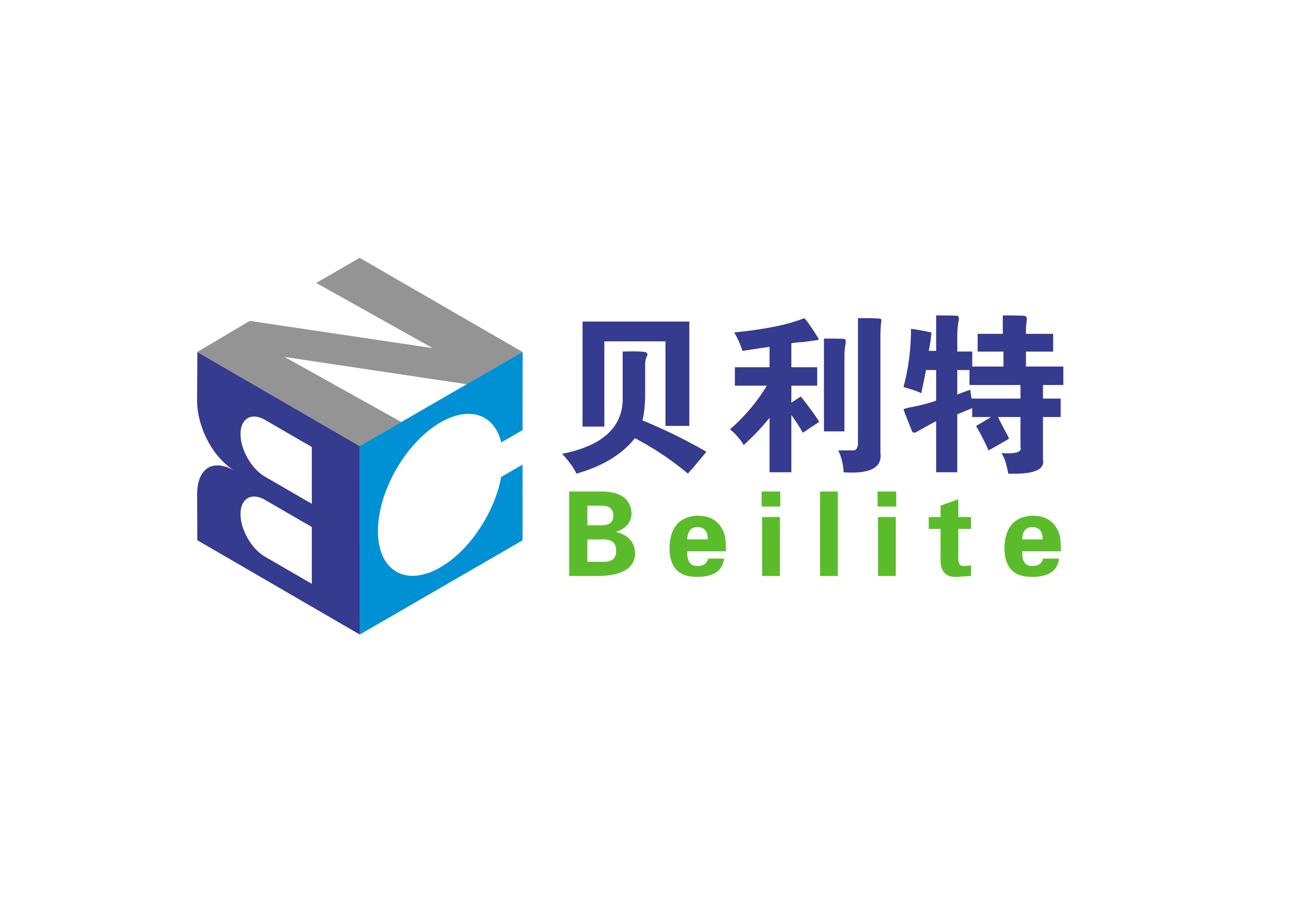贝利特化学股份有限公司